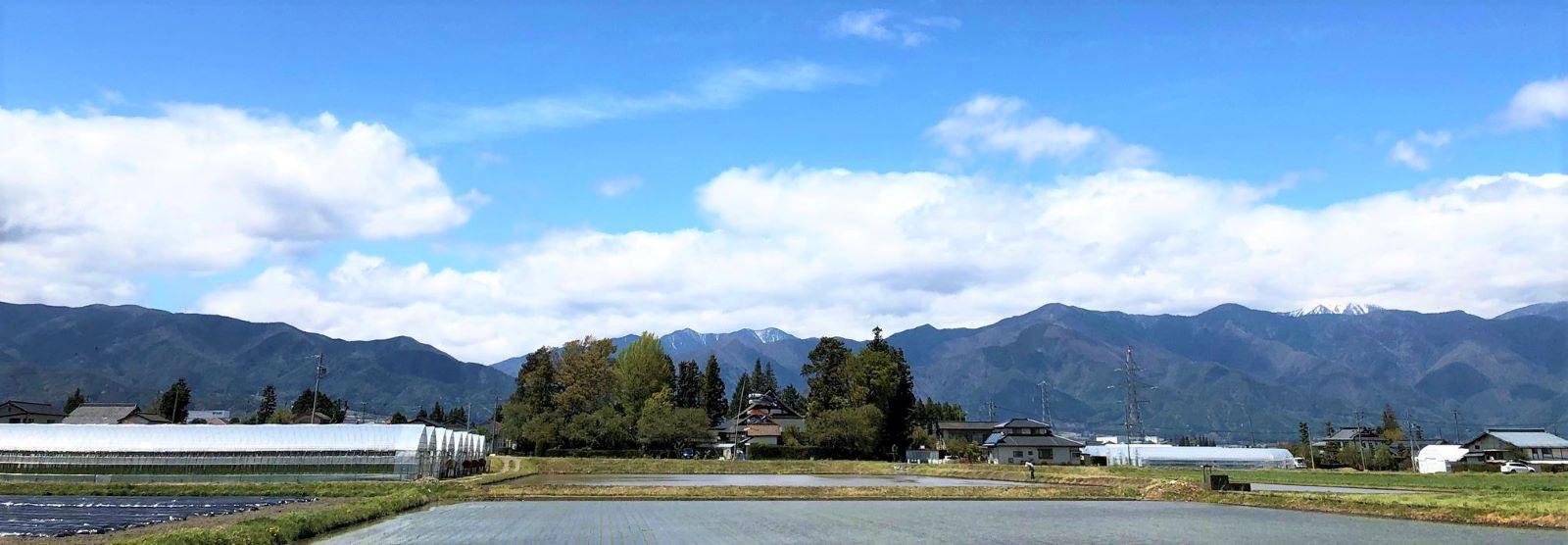 信州神林福應寺